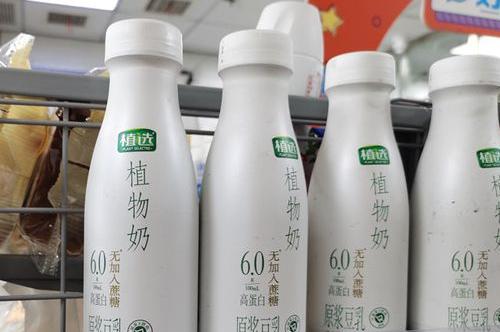植物奶营销策划