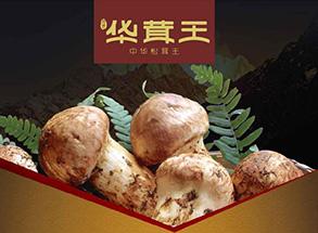 """华茸王——""""舌尖上的中国"""" width="""