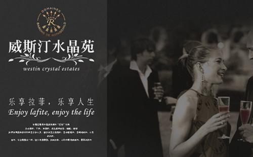 葡萄酒的广告媒介策略
