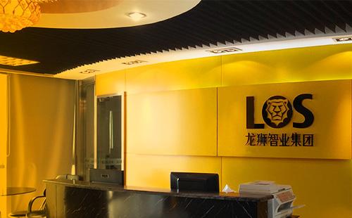 广州咨询和规划公司龙狮